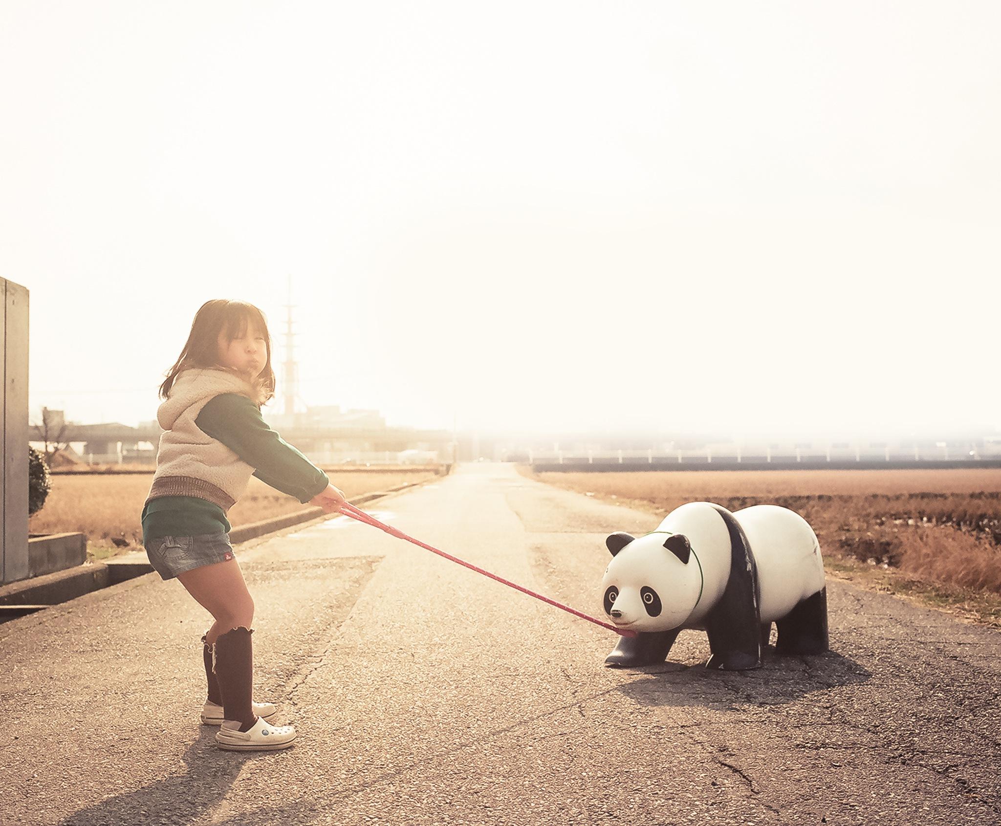 https://combo.staticflickr.com/ap/build/images/Panda_XL.jpg